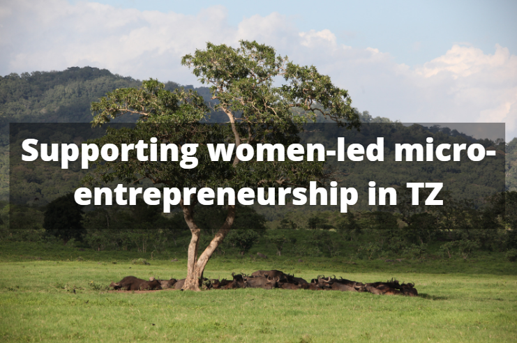 Supporting TZ women entrepreneurship